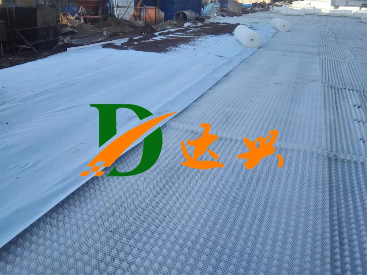20厚雷电竞ios下载板排水层